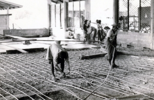 As a cost saving measure, long slices of bamboo were used in place of steel reinforcing rods. This was not my idea, but I did not oppose it. I wish I had. The workmen used wooden stakes to hold the latticework of bamboo off of the dirt surface below before pouring the cement. Later, we had a big termite problem!